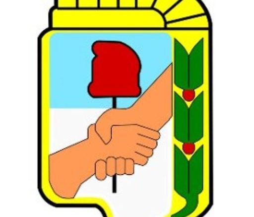 cropped-aplique-bordado-escudo-peronista-x-10-cm-D_NQ_NP_903213-MLA30322414132_052019-Q.jpg